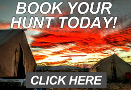 Book your Arizona Hunting Trip